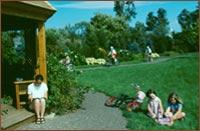 MacNarin Park